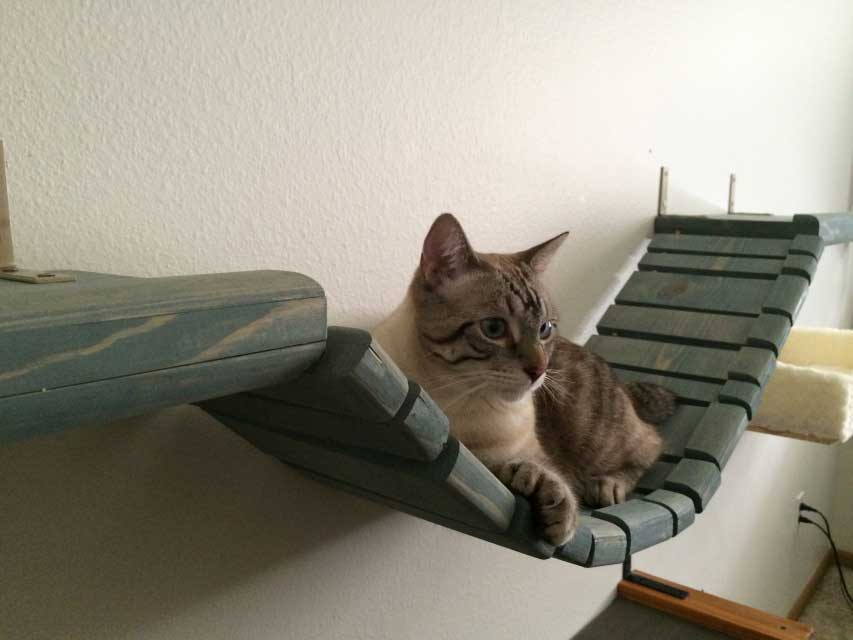 Mounting Instructions CAT BRIDGE W/ RAISED LEDGE