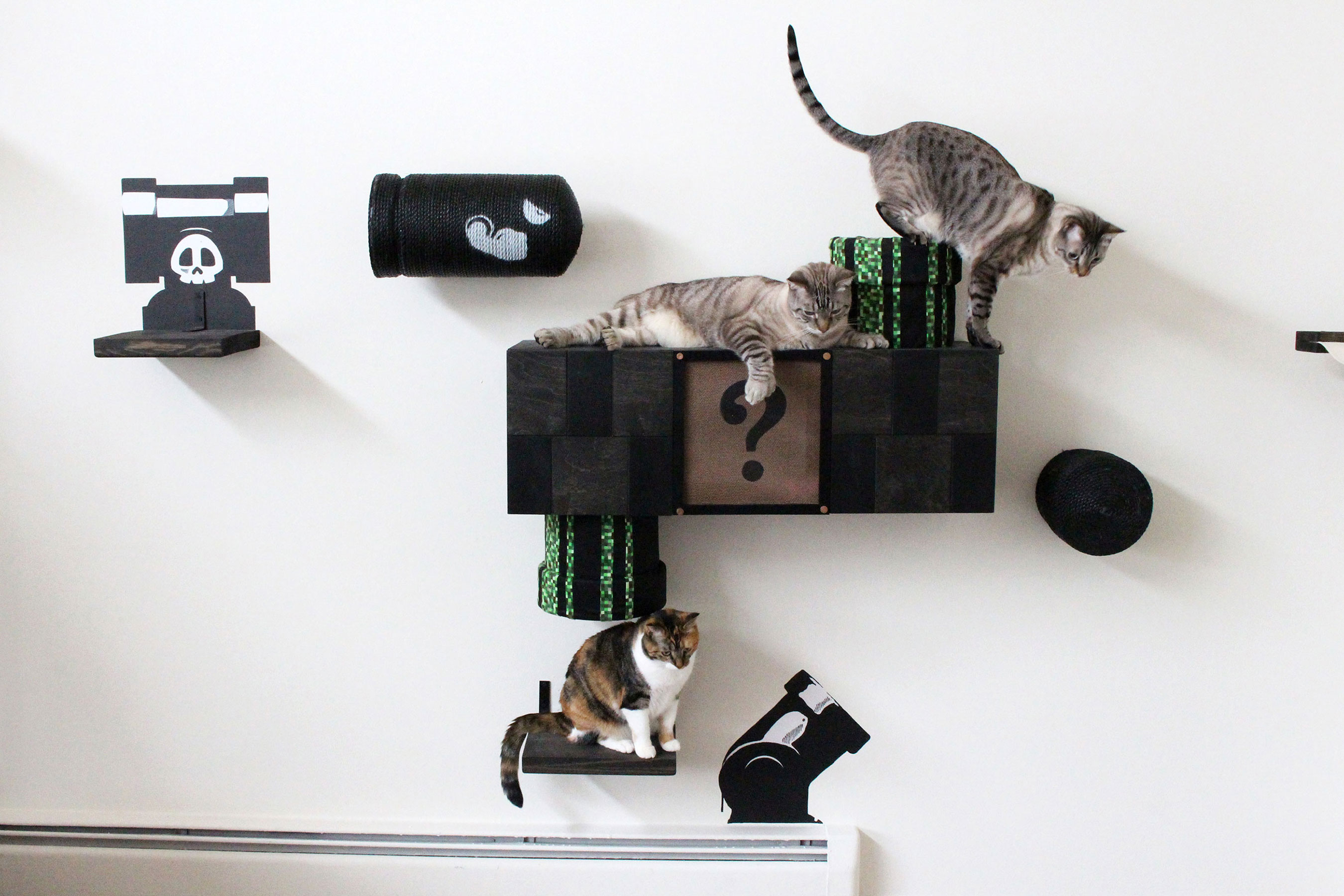 Unconventional Cat Furniture